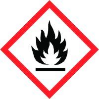 Graphitöl Schmiermittel für PKW Schlösser-Scharniere 50ml